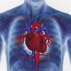 атеросклероз аорты сердца б